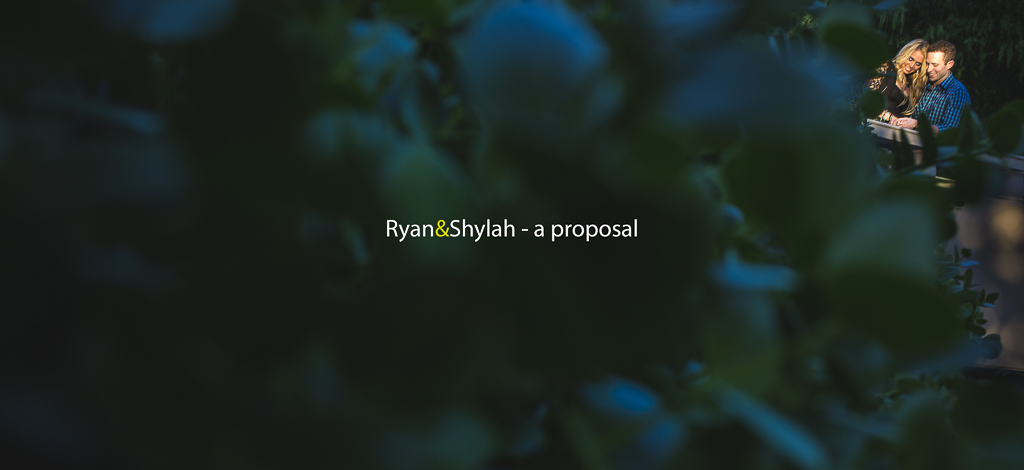 Ryan proposes to Shylah – a love story at The Phoenician
