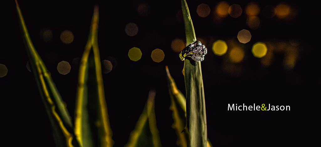 Michele & Jason – Wedding at The Four Seasons Scottsdale